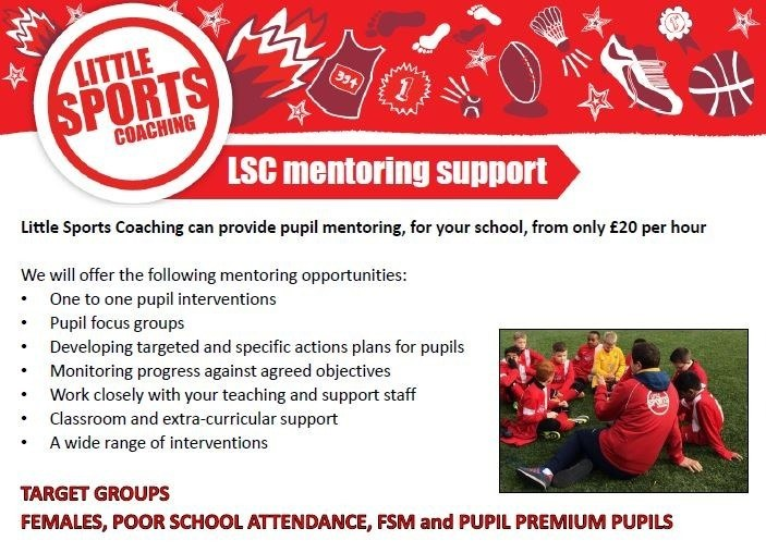LSC Mentor Support